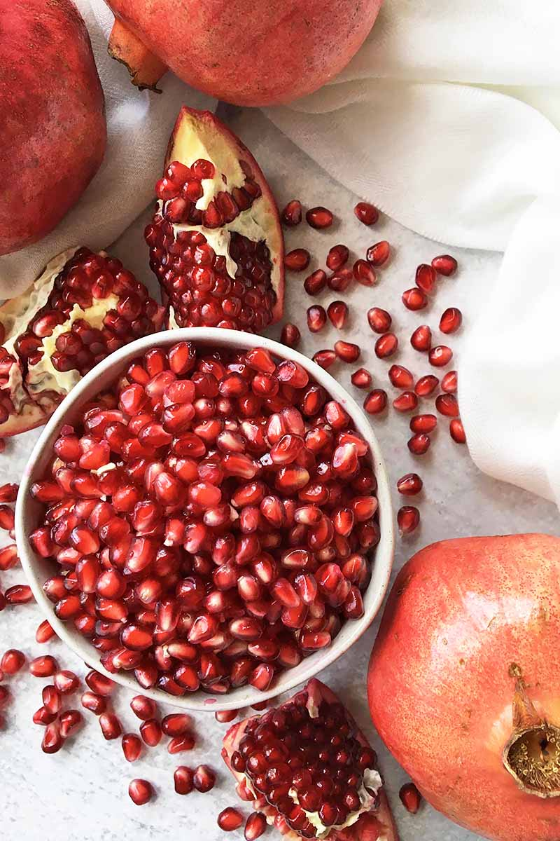 Vertical top-down image of a white bowl with bright red seeds surrounded by segments of fresh fruit next to a white towel.