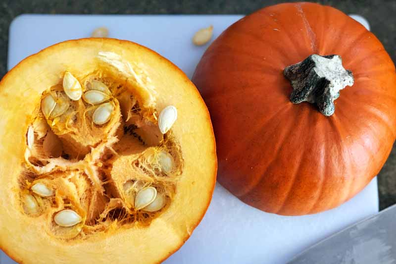 Horizontal overhead image of a sugar pumpkin that has been cut in half horizontally, with seeds and pulp visible inside on one half, and the stem still intact on the other, on a white plastic cutting board with a few scattered seeds and a chef's knife, on a brown surface.