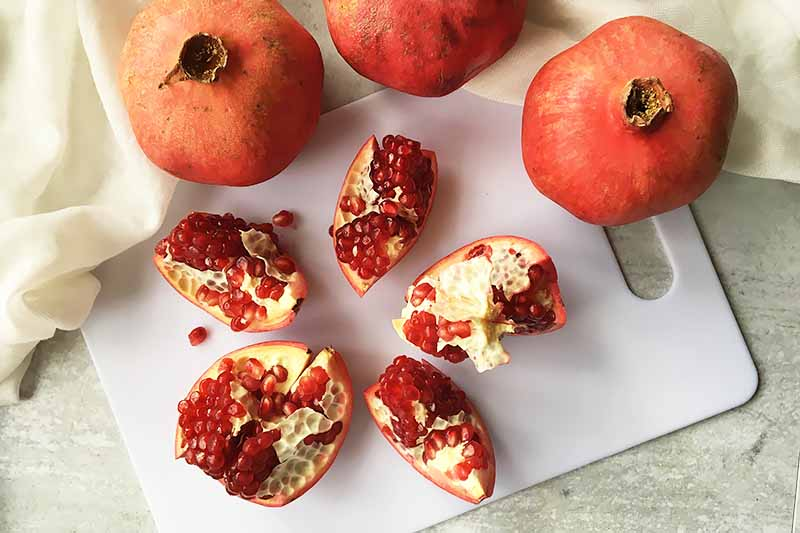 Horizontal image of a sectioned fruit with red seeds on a white cutting board.