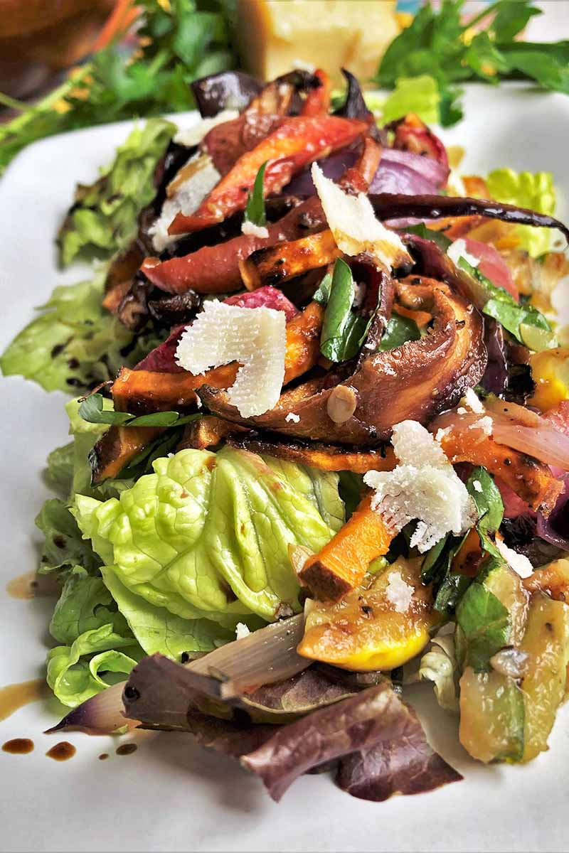 Vertical oblique overhead image of roasted vegetables with fresh herbs on a bed of lettuce, dressed with balsamic vinegar, on a white serving platter.