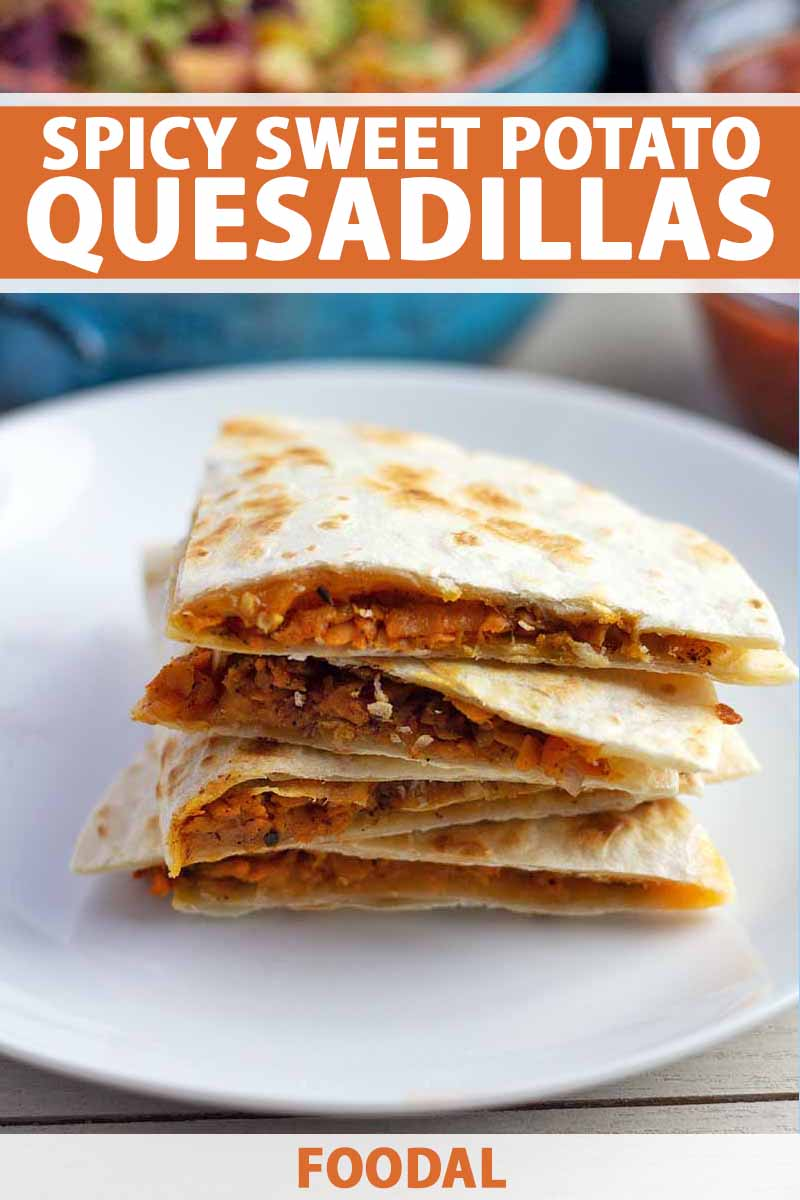 Vertical image of four quarters of a homemade sweet potato quesadilla that have been stacked on top of each other on a white ceramic plate, with a blue ceramic bowl of guacamole and a glass bowl of salsa in soft focus on the background, printed with orange and white text near the top and at the bottom of the frame.