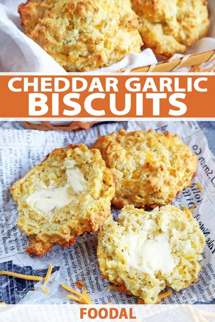 Vertical image of cheddar garlic biscuits in a basket and on a paper liner, with one in the foreground that is cut in half with butter spread on it, on a gray surface with scattered pieces of shredded cheese, printed with orange and white text in the top third and at the bottom of the frame.