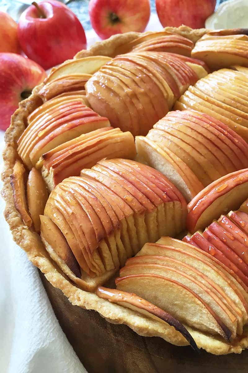 Vertical close-up image of arranged apple slices on a cooked pastry.
