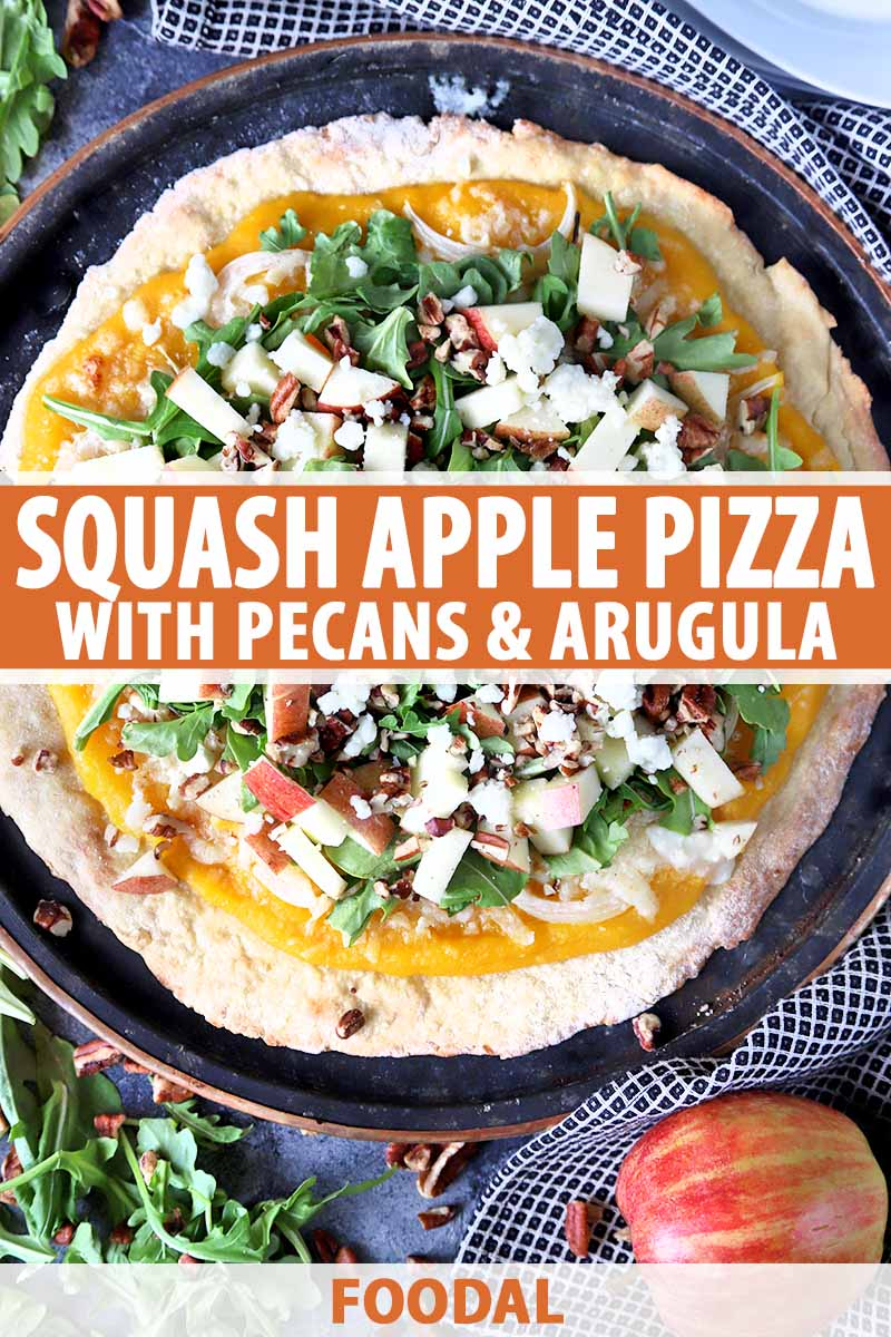 Vertical overhead image of a homemade pizza on a metal pan, topped with squash puree, chopped apples and nuts, fresh arugula, and crumbled cheese, on a gray background with a black and white checkered cloth, and scattered topping ingredients, printed with orange and white text at the midpoint and the bottom of the frame.