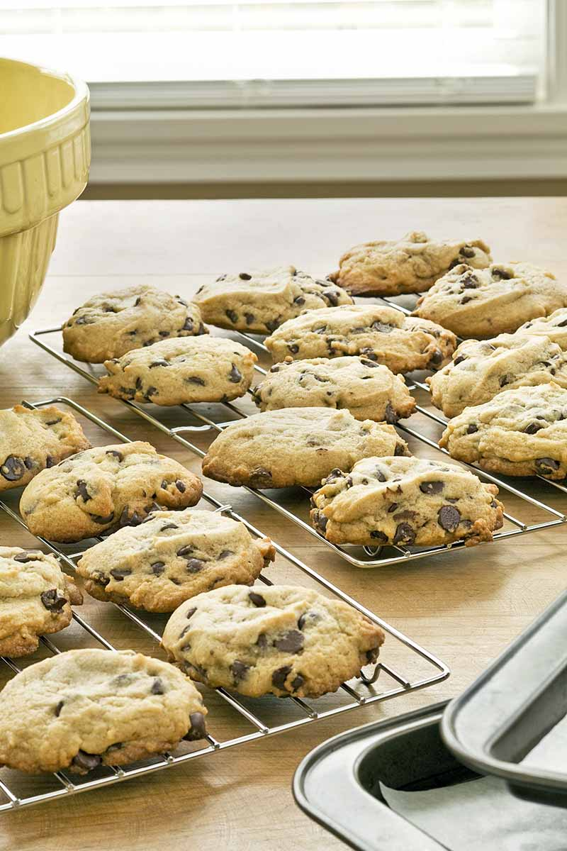 Vertical closely cropped image of cookies cooling on metal racks on a kitchen countertop in front of a window, with a yellow ceramic mixing bowl to the right and two stacked metal rimmed baking sheets to the right.