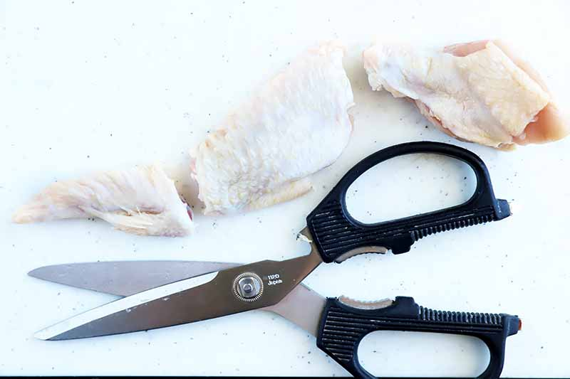 Horizontal image of kitchen shears next to a broken down poultry wing.