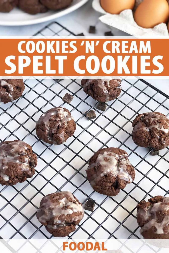Vertical oblique overhead image of glazed chocolate cookies arranged in rows on a wire rack on a white surface, with a white plate of more of the baked goods and a carton of brown eggs, printed with orange and white text in the top third and at the bottom of the frame.