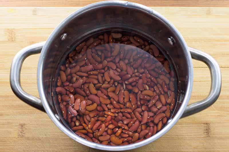 Horizontal image of a pot with water and dried red legumes.