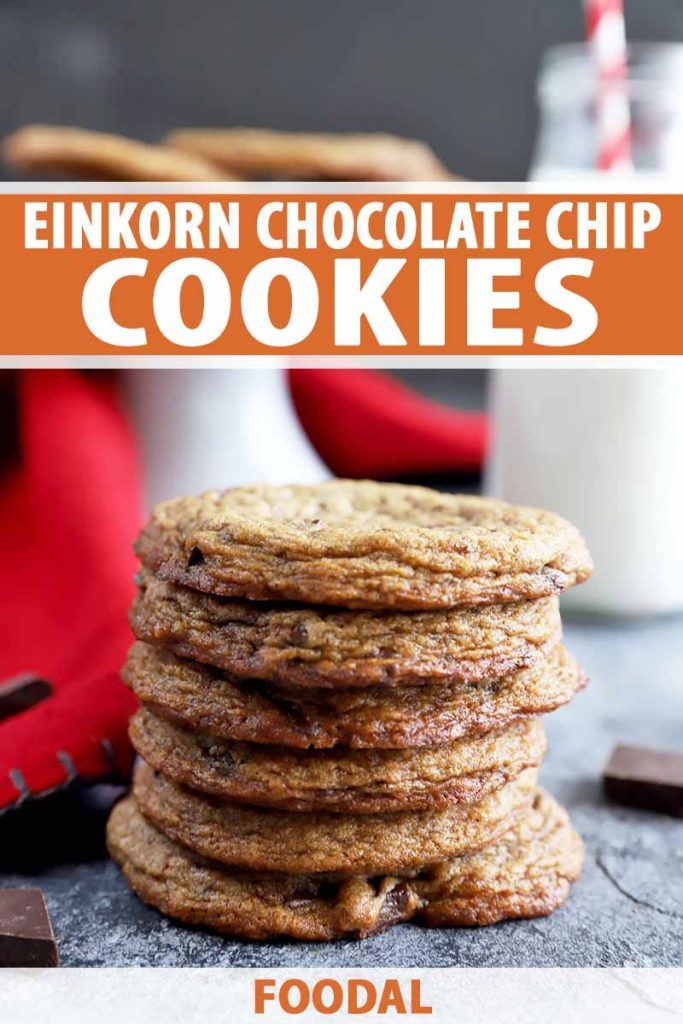 Vertical image of a tall stack of thin, dark cookies in front of a red towel and white cake stand.