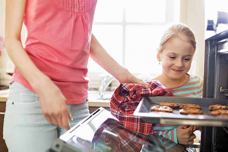 Horizontal image of the legs and torso of a woman in a pink shirt and light gray pants, pulling a baking sheet of cookies out of the oven with a red plaid kitchen towel, with a blond child smiling and observing, with a brightly lit window in the background.