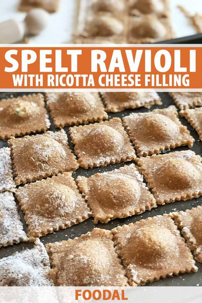 Vertical image of rows of stuffed dark brown pasta, with text on the top and bottom of the image.