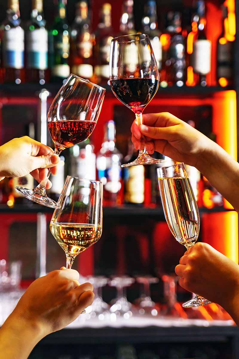Four hands holding wine and champagne in different colors and different types of glassware are about to clink them together, with a lit and stocked bar in the background.