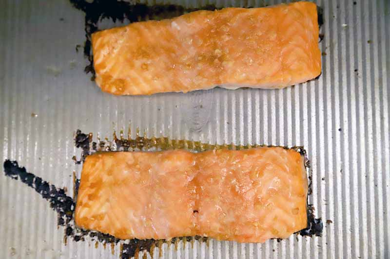 Horizontal image of a baking sheet with two baked fish fillets.