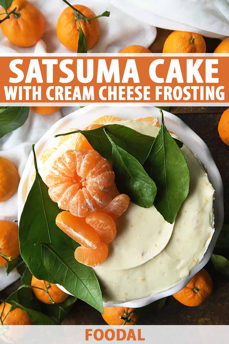 Vertical image of a dessert covered in frosting with oranges and green leaves, with text on the top and bottom of the image.