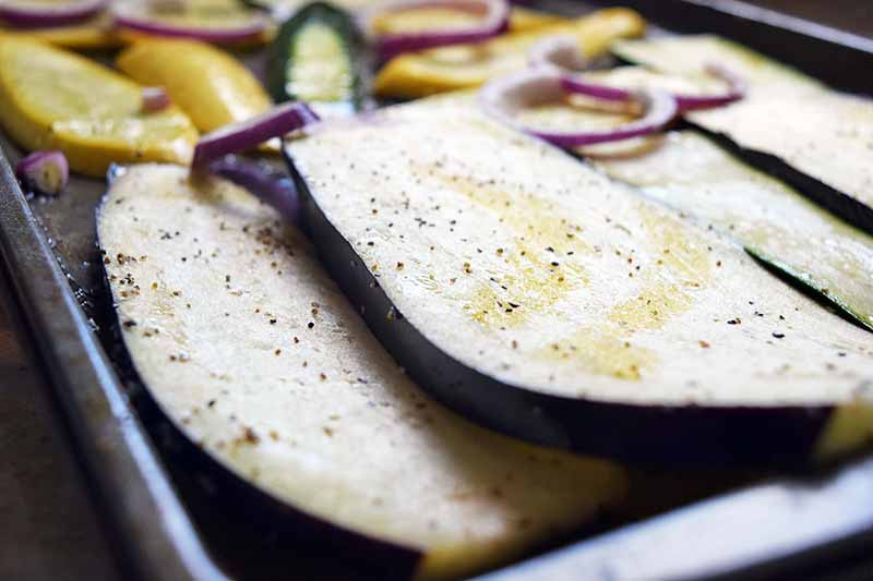 Horizontal closeup image of sliced eggplant, onions, and squash, drizzled with olive oil and sprinkled with salt and pepper, on a metal baking sheet in bright sunlight.