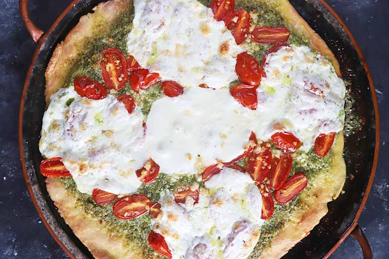 Horizontal image of a baked pizza topped with a green sauce, sliced grape tomatoes, and melted circular rounds of cheese.