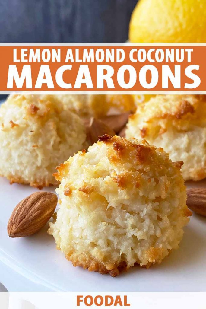 Vertical close-up image of coconut macaroons on a white platter next to whole raw almonds, with text on the top and bottom of the image.