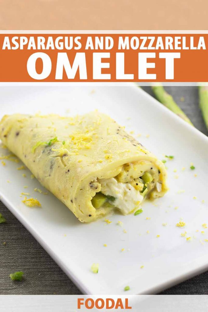 Vertical image of half of an omelet filled with cheese and vegetables on a white plate with lemon zest, with text on the top and bottom of the image.