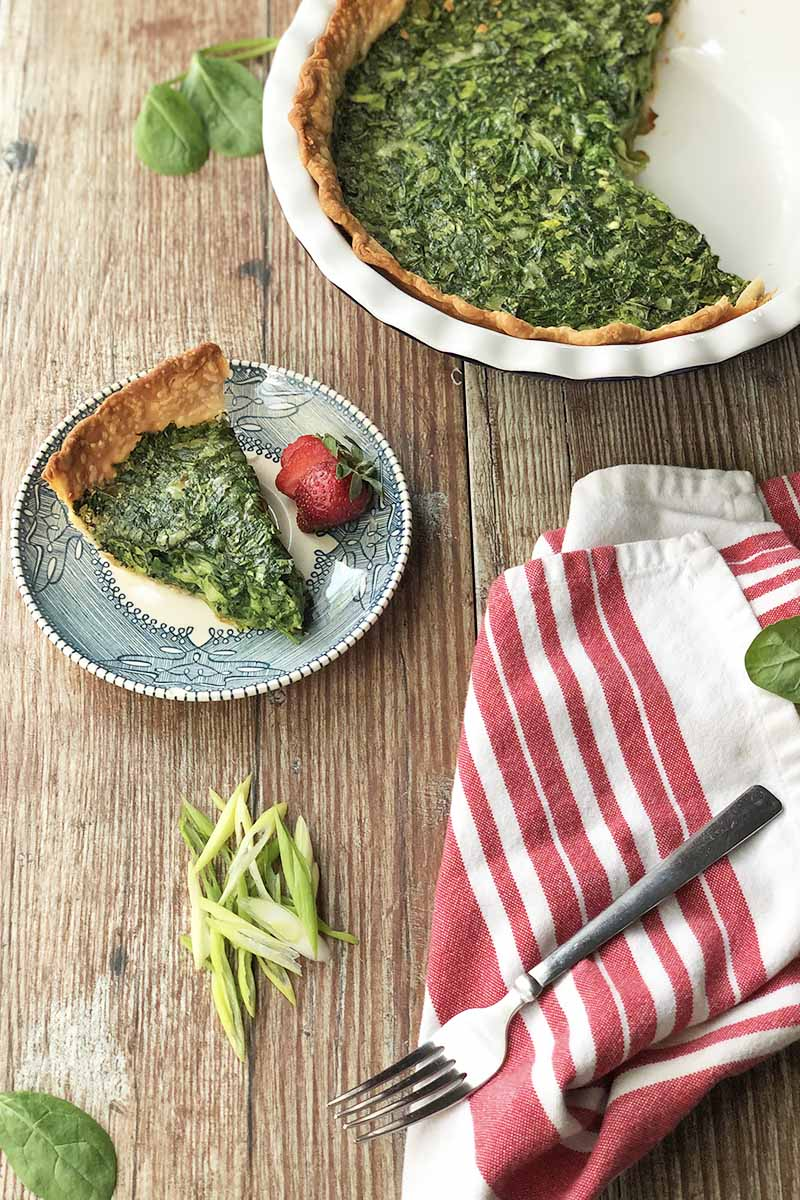 Vertical image of a spinach quiche in a white ceramic pan and on a blue plate with strawberries next to a red and white towel, fork, and sliced scallions on a wooden table.