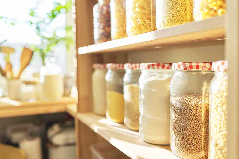 Horizontal image of wooden shelves with organized glass containers with red and white lids filled with assorted dry ingredients.
