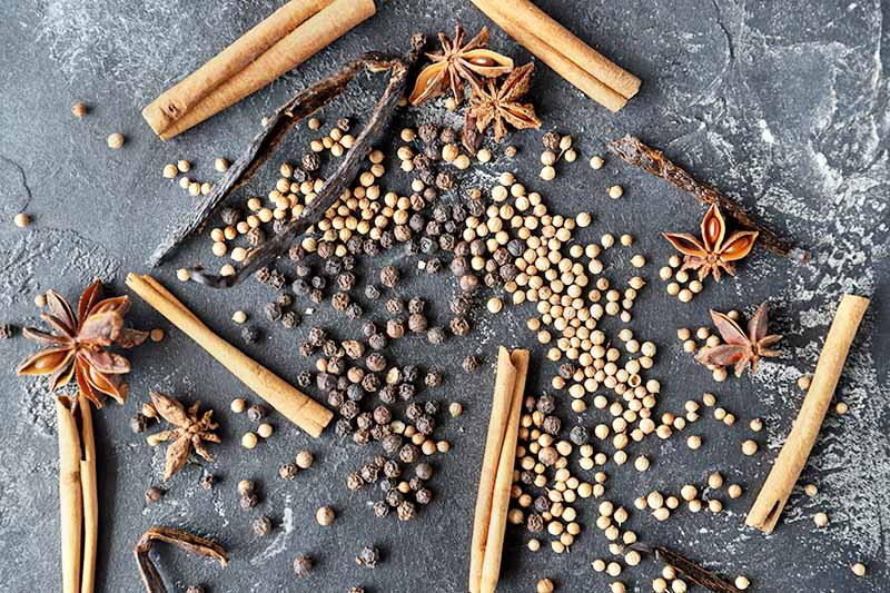 Horizontal overhead image of whole cinnamon sticks, vanilla beans, star anise, coriander, and peppercorns, on a gray stone surface.