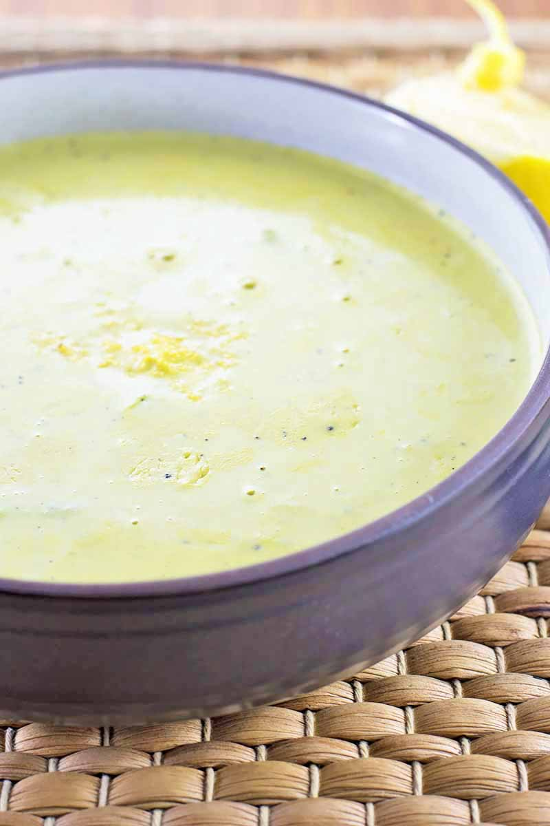 Vertical close-up image of a bowl of creamy green liquid topped with lemon zest on a mat.