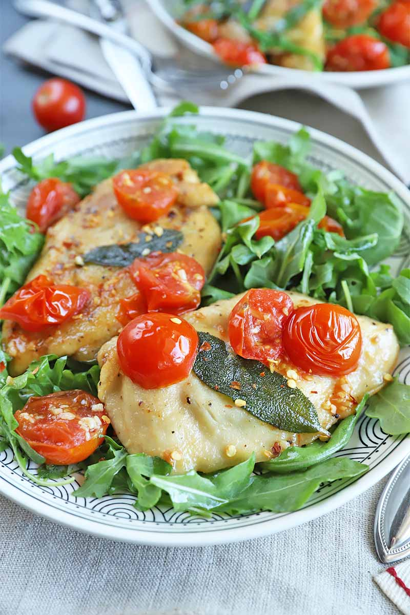 Vertical image of a large plate with a bed of greens, and chicken and tomatoes on top.