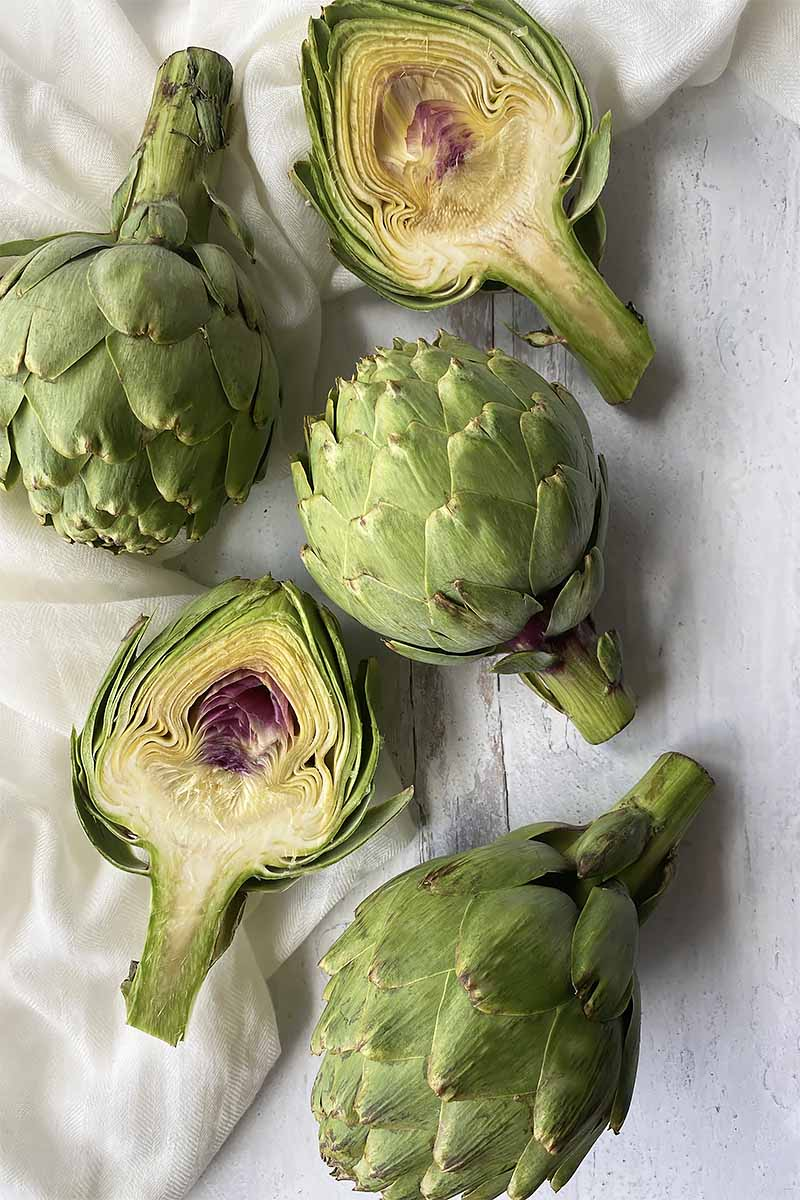 Vertical top-down image of halved and whole artichokes on a white surface on top of a white towel.