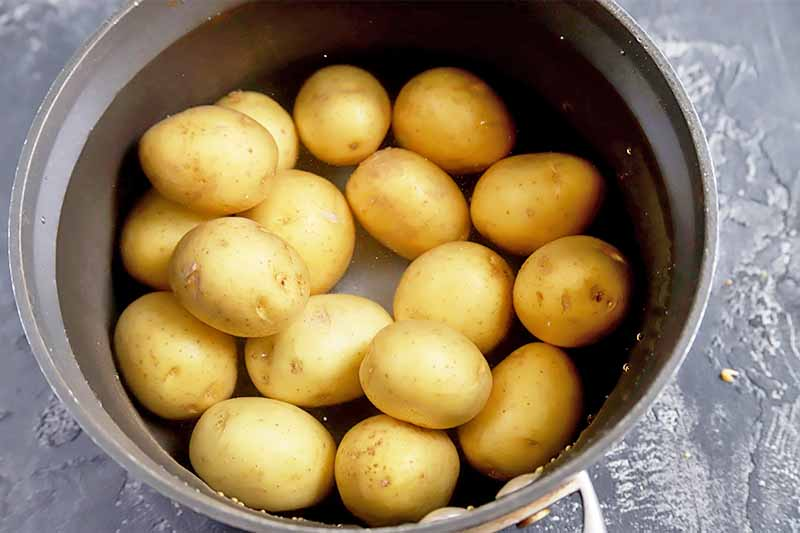 Horizontal image of a pan with water and whole small spuds.
