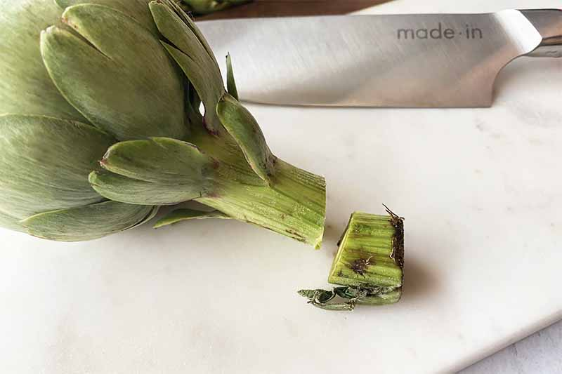 Horizontal image of the stem of a green plant with part of it cut off on a cutting board next to a knife.
