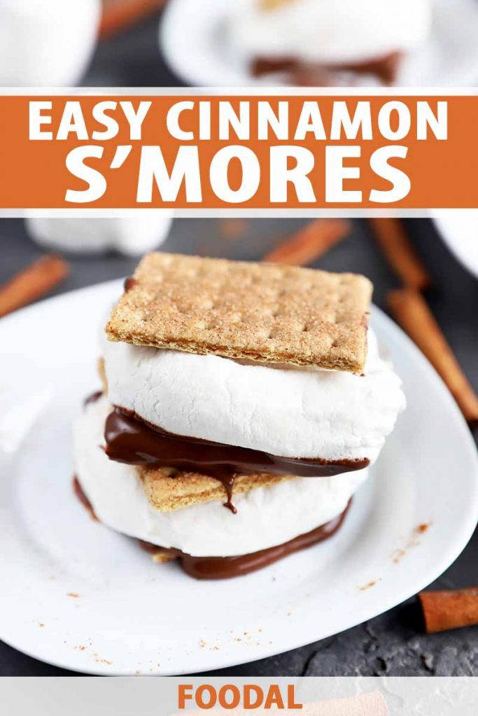 Vertical image of a stack of two s'mores on a white plate surrounded by cinnamon sticks, with text on the top and bottom of the image.