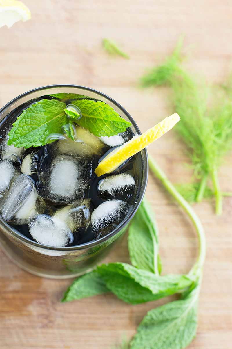 Vertical top-down image of a glass filled with a dark green liquid and topped with ice cubes, fresh mint, and a lemon slice on a wooden surface with other fresh herbs and green fronds.