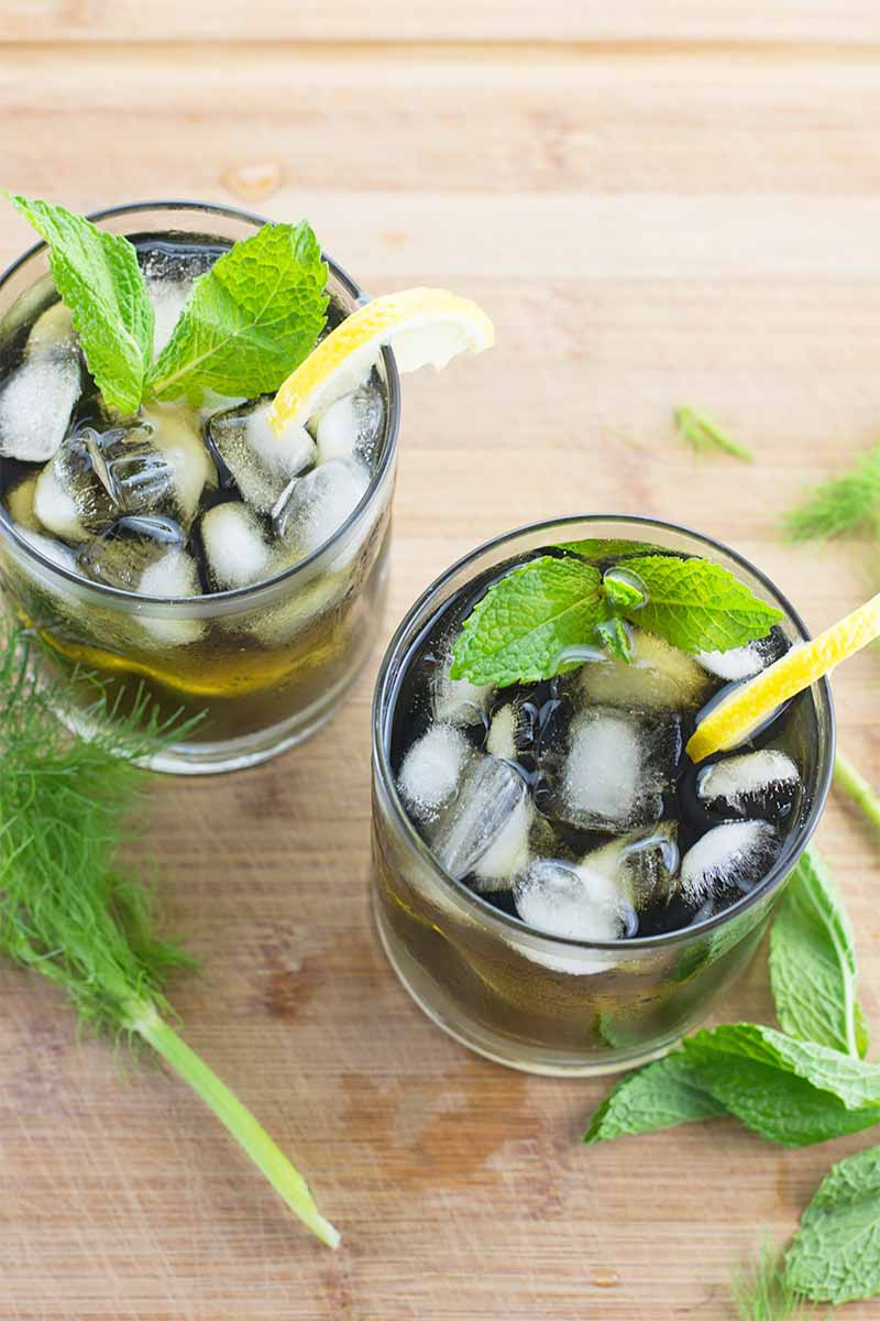 Vertical image of two glasses filled with a dark green clear liquid topped with ice, mint, and lemon wedges on a wooden surface next to green fronds.