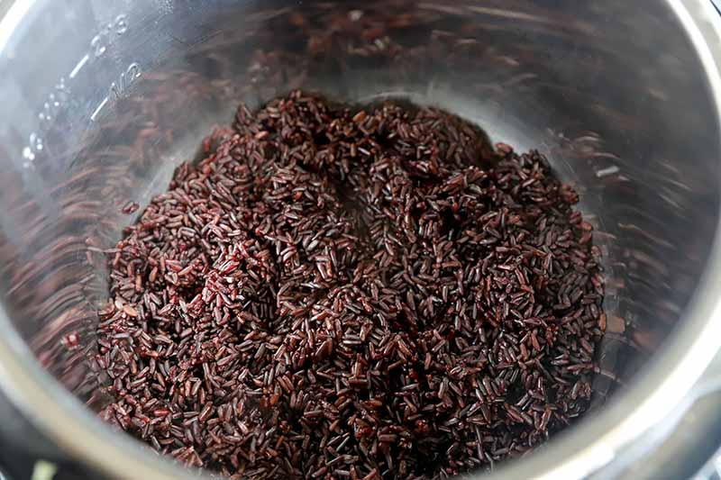 Horizontal image of a bowl filled with steamed dark grains.