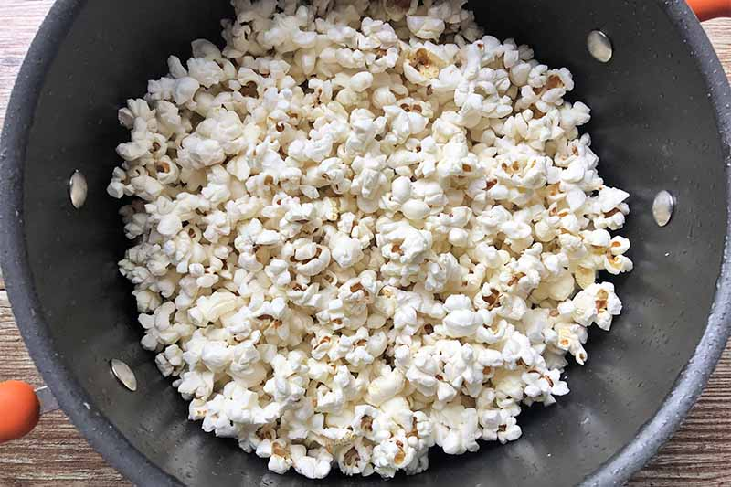 Horizontal image of a pot filled with white puffy kernels.
