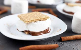Horizontal image of one single s'more with fluffy marshmallow and melted chocolate on a white plate next to cinnamon sticks on a gray surface.