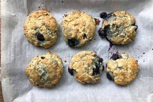 Maple Blueberry Coconut Oil Scones Made with Einkorn Flour