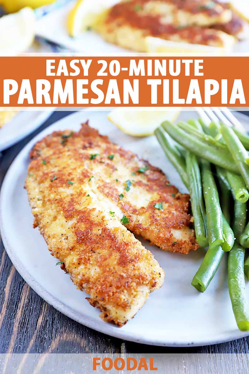 Easy 20 Minute Parmesan Tilapia Recipe Foodal