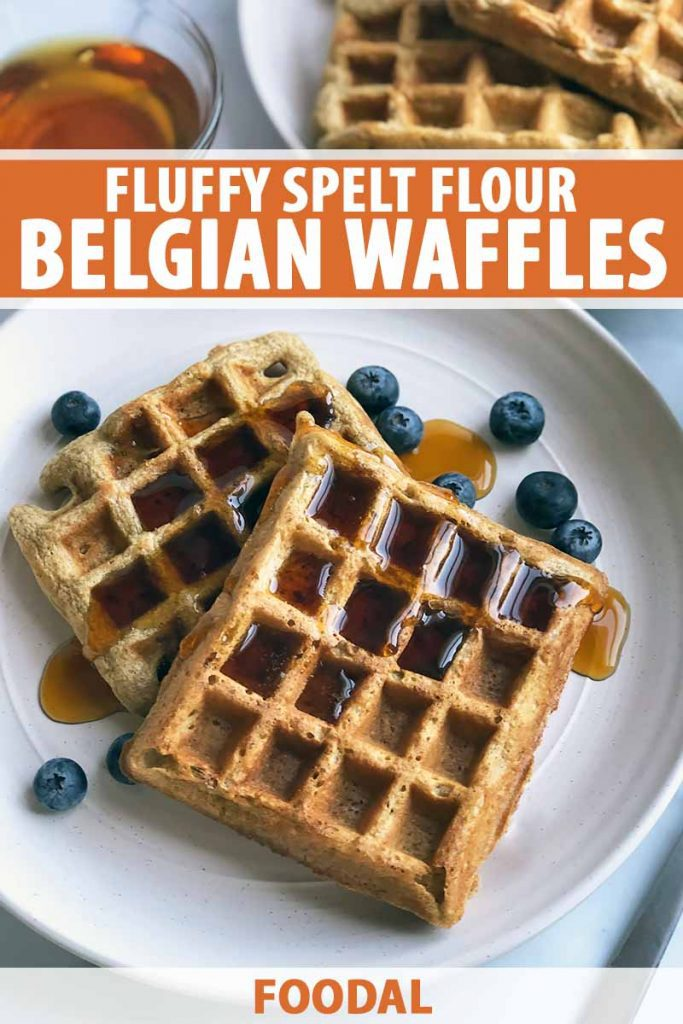 Vertical image of two shingled waffles covered in syrup on a white plate with blueberries, with text on the top and bottom of the image.