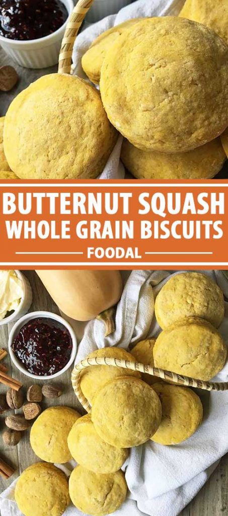 A collage of photos showing different views of a batch of butternut squash whole grain biscuits.