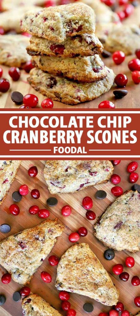 A collage images showing various angles of a batch of cranberry chocolate chip scones.