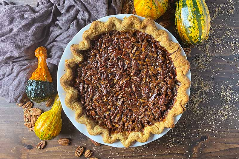 Horizontal image of a whole baked nut pie on a wooden table surrounded by a brown towel, squash, and sugar.