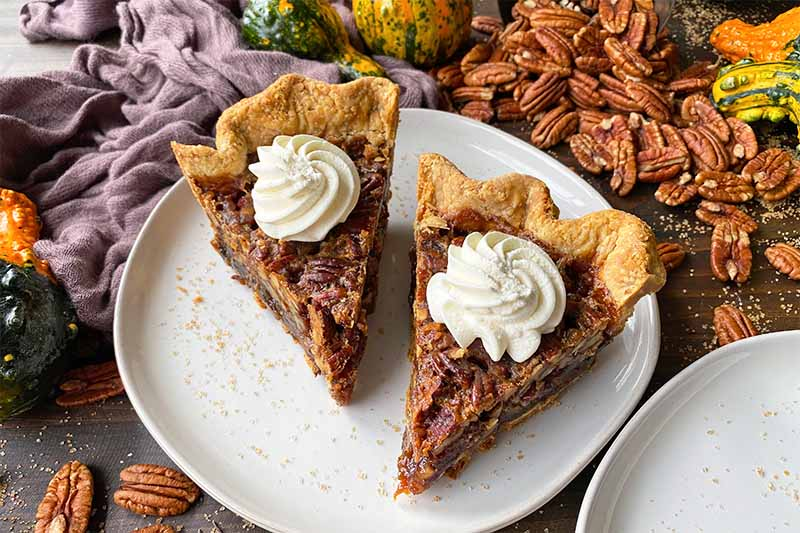 Horizontal image of two pecan pie slices on a white plate with nuts, squash, and a brown towel in the background.