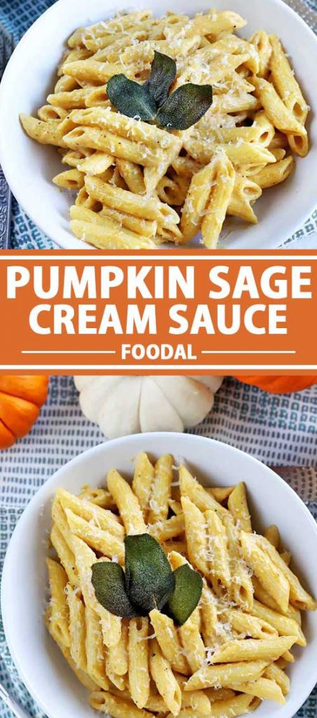 A collage of photos showing different views of Pumpkin Sage Cream Sauce spread over pasta.