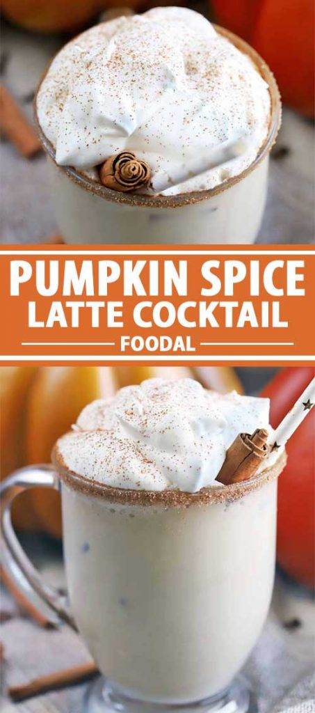 A collage of photos showing different views of a Pumpkin Spice Latte Cocktail.
