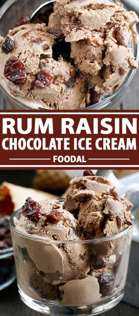 A collage of photos showing different views of Rum Raisin Chocolate Ice Cream.