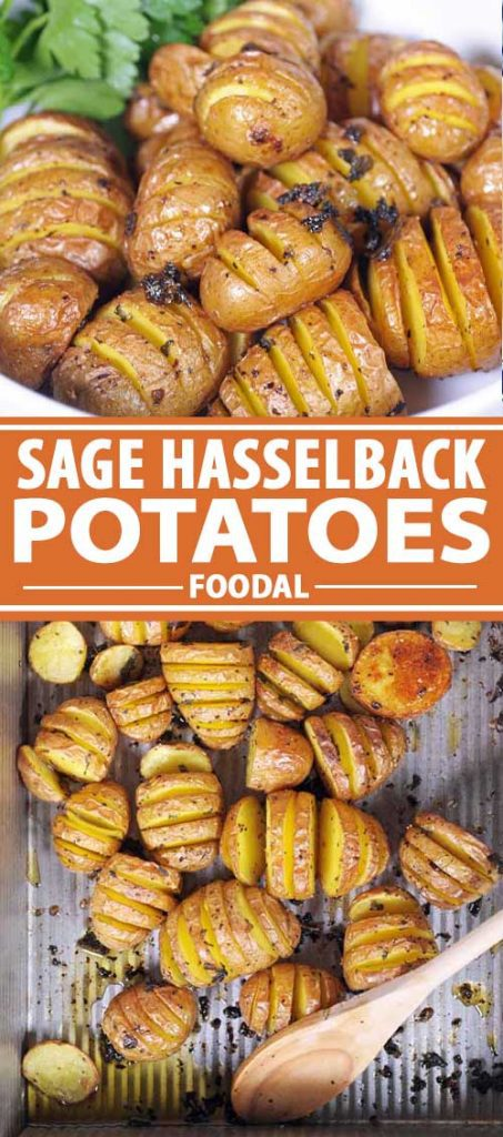 A collage of photos showing different views of Sage Hasselback Potatoes.