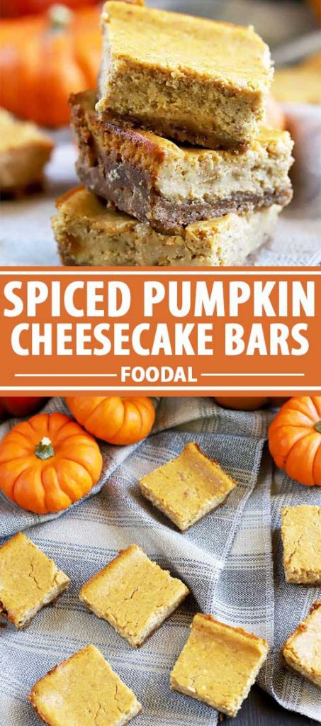 A collage of photos showing different views of a spiced pumpkin cheesecake bar recipe.