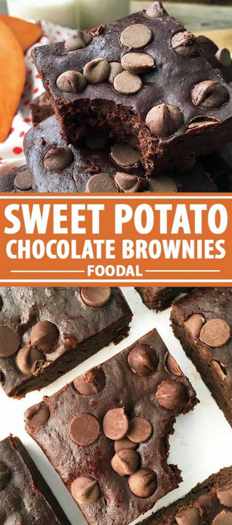 A collage of photos showing different views of a Sweet Potato Chocolate Brownies.