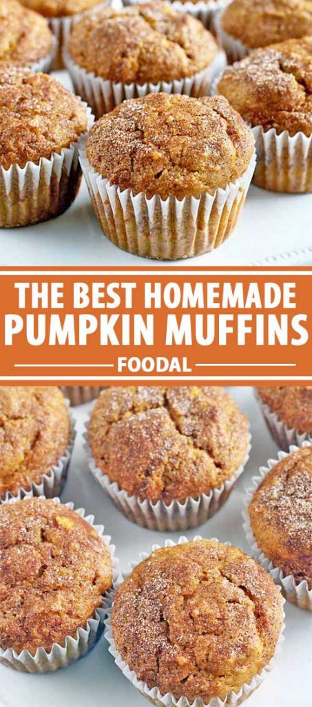 A collage of photos showing different views of homemade pumpkin muffins.